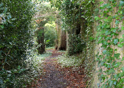 The grounds at Orlagh